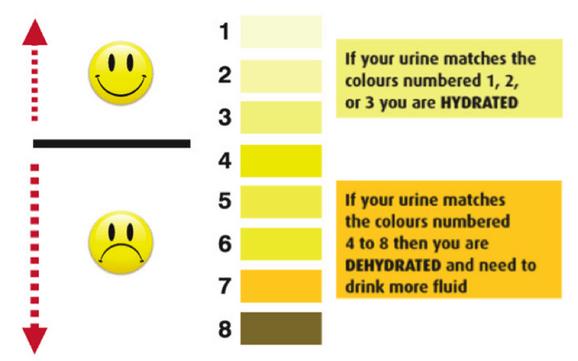 Urine Colour Chart