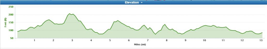 Ealing Course Elevation