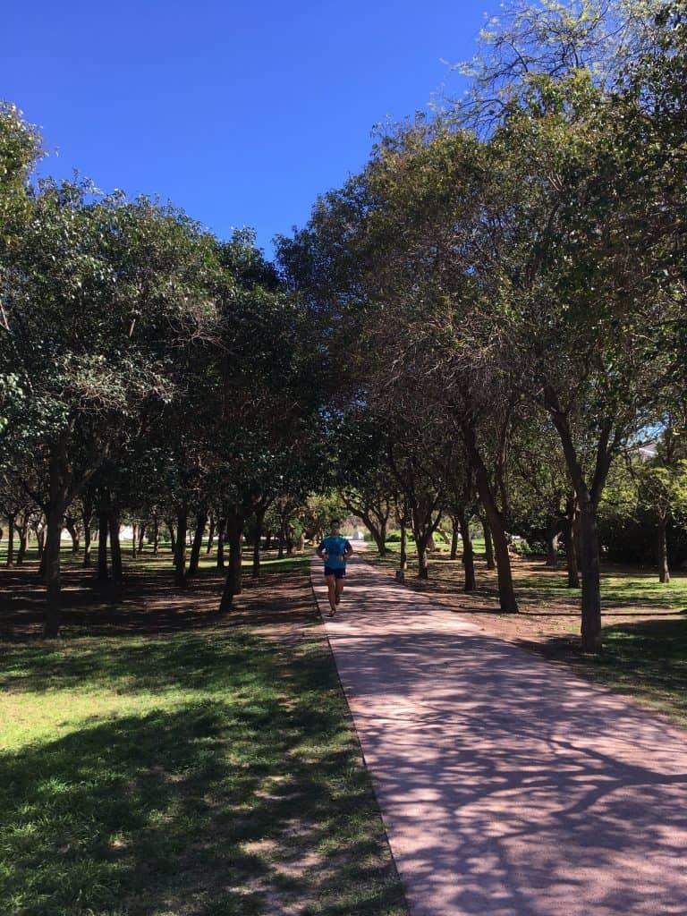 Valencia Path Runner